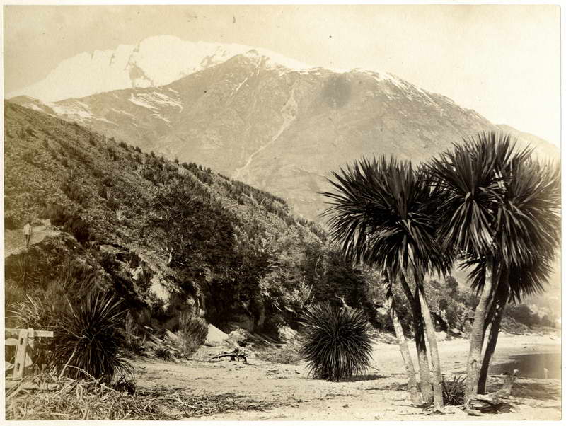 Diamond Lake / Hart Campbell Albumen Print