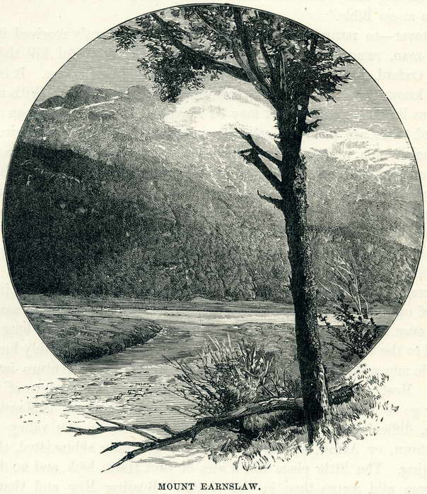 Earnslaw, Wood Cut