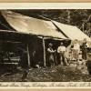 Murcott Burn Camp, Birley